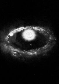 Supernova 30