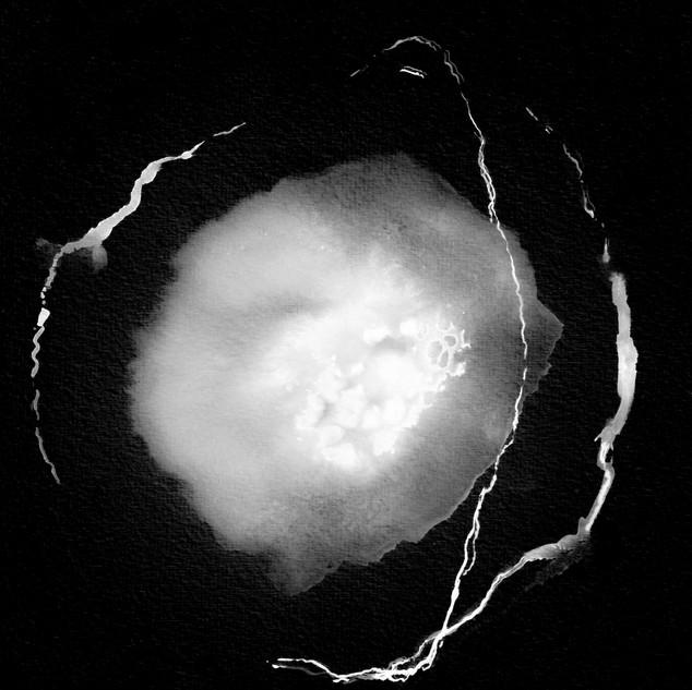 Supernova 28.jpg