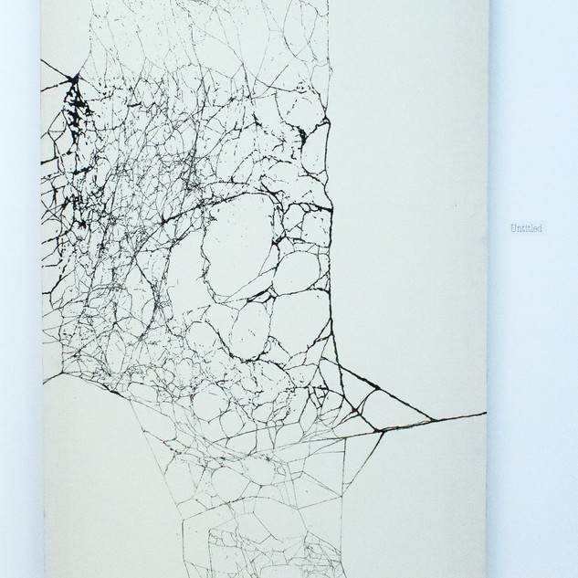 Untitled (long canvas)