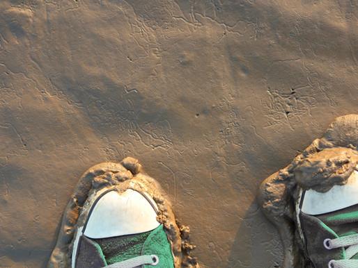 Les p'tites anecdotes de La plume : mes belles baskets dans la boue