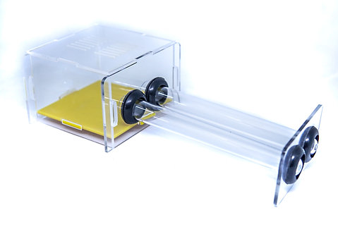 Foraging area (Dual Tube)