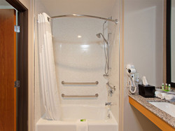 accessible-shower-with.jpg