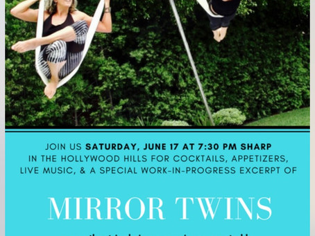 Preview of Mirror Twins