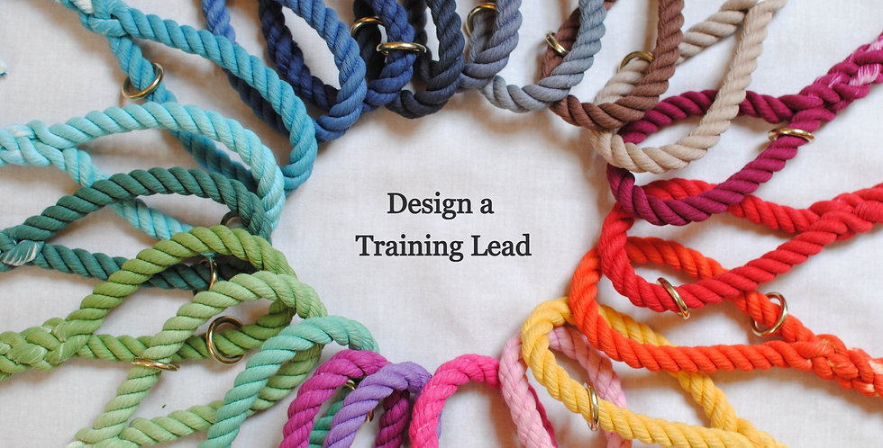 Design Your Own - Cotton Rope Training Lead