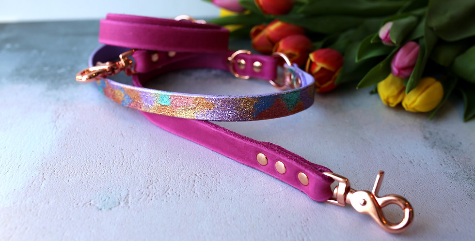 Rainbow Ombre Glitter Leather Softies - Training Leads