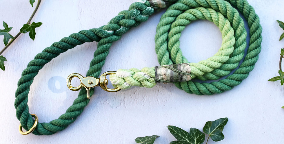 Green Ombre - Rope Leads