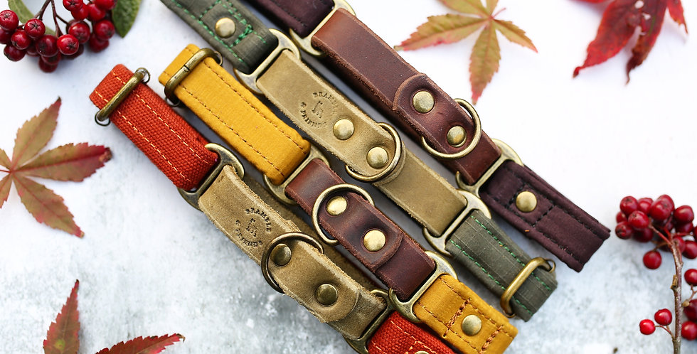 Soft Leather and Weatherproof Oilskin Martingale Collars