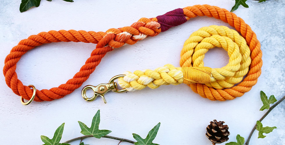 Autumn Ombre - Rope Leads