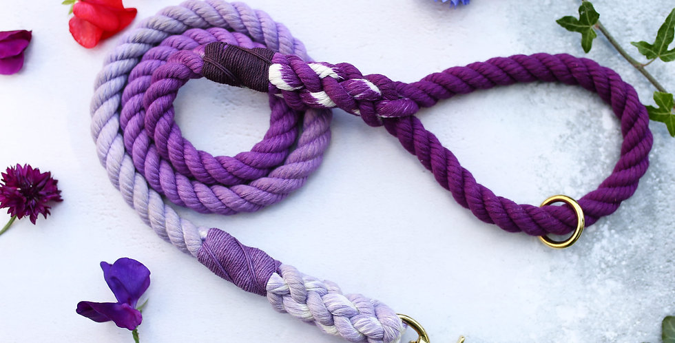 Purple Ombre - Rope Leads