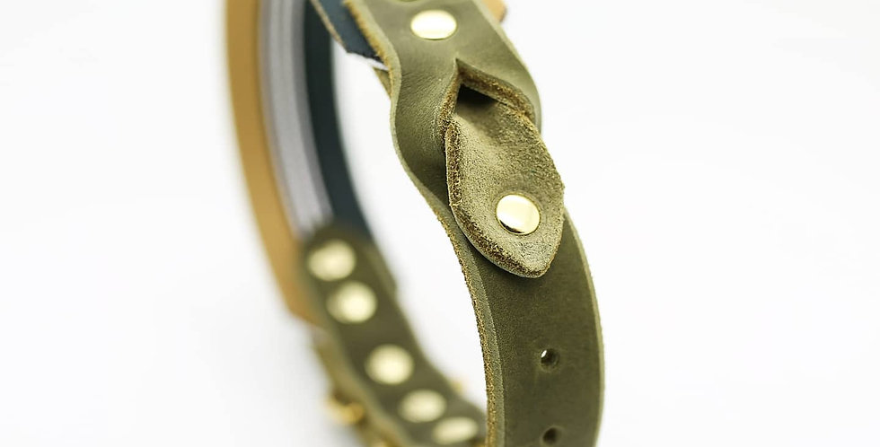 Luxury Webbing and Leather Collar - Admiral Green