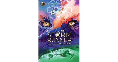 The Storm Runner by J.C Cervantes