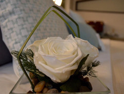 Preserved roses for guest cabins