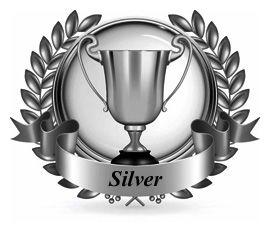 Silver Proficiency