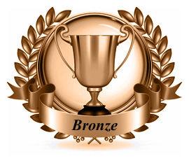 Bronze Proficiency