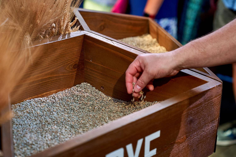 Grain Sensorium