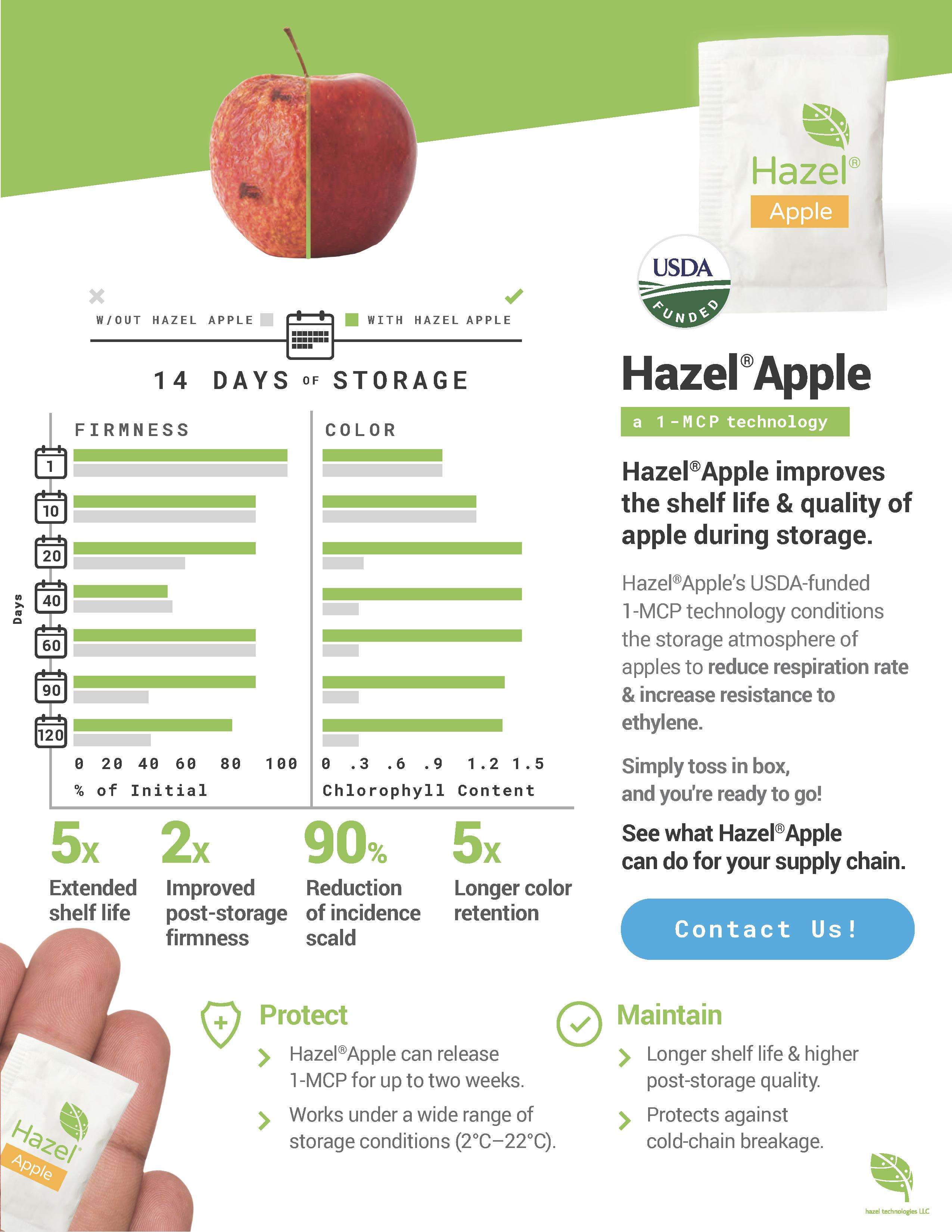 Hazel Apple