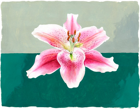 """""""Lone Lily"""""""