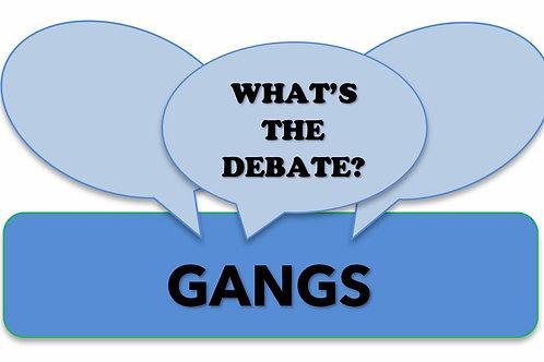 What's The Debate?-Gangs
