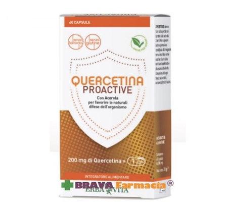 Quercitina Proactive