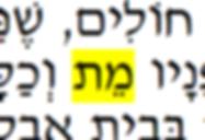 שמתם לב פעם כמה מילים יש בשפה העברית לתאר את סוף החיים? האם זה מקרי? האם זה אמור לעזור לנו קצת בהתמודדות עם הדבר הזה שאנחנו אפילו מתקשים לקרוא לו בשם? המילים...