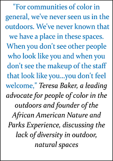DIVERSITY AND INCLUSION QUOTE 2.png