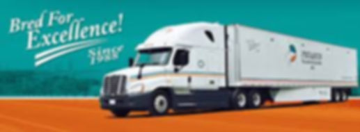 Since 1988, the name Pegasus Trasportation has been synonymous with quality truckload services. Pegasus has a tradition of on time deliveries, responsive customer service, and competitive pricing.