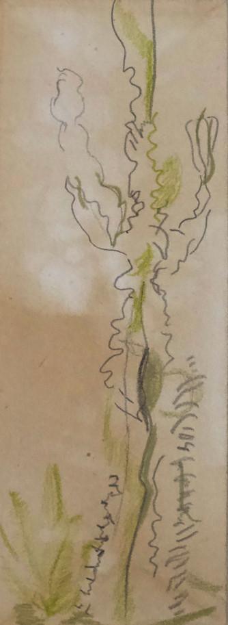 Ink 27.jpg