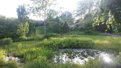 Mustergarten Teich