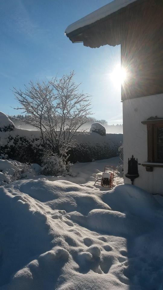 Winter_Steingarten