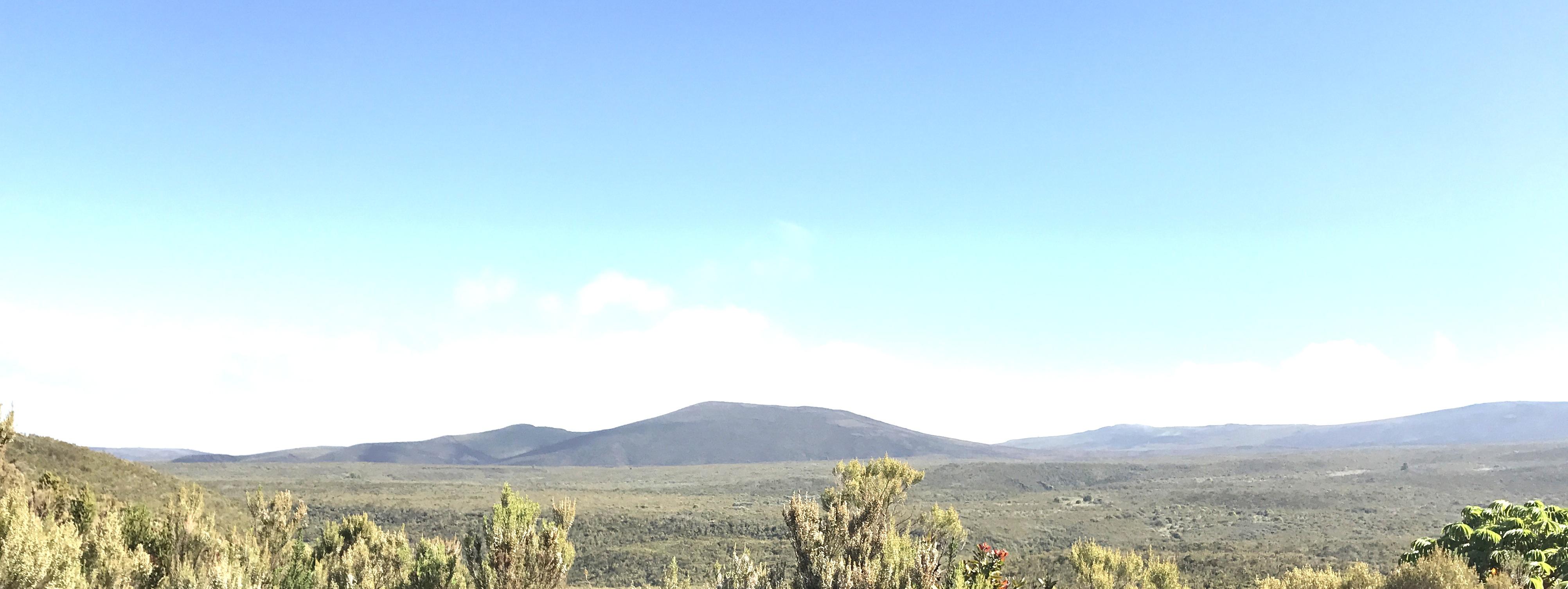 Day 2 landscape