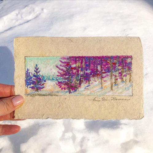 Fuchsia Snowday
