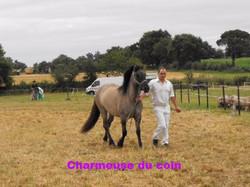 charmeuse-du-coin_edited