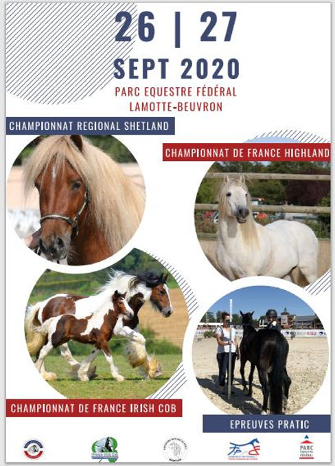 Affiche national 2020.JPG