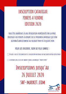 Visuel_catalogue_poneys_à_vendre.png