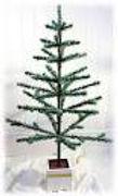 Feather Tree.jpg