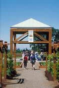 The Oregon Garden with DeSantis Landscapes, Inc.