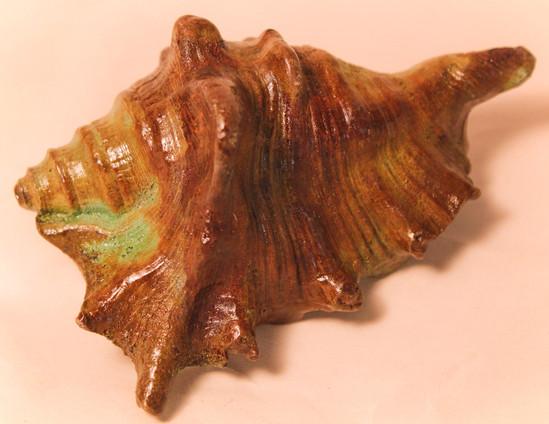 Bronze conch shell