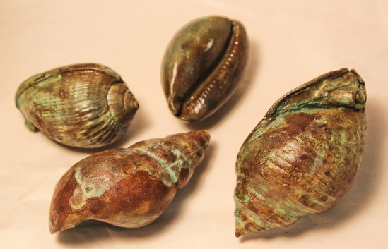 Bronze sea shells