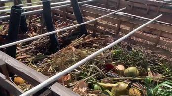 Composting with Aloha.mov