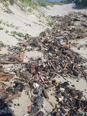 Beach Littered