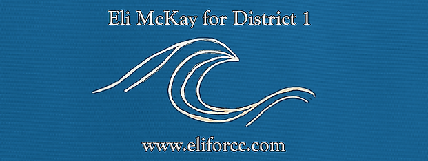 Eli for cc district 1.png