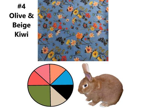 6 Scarves 2021: Jan-June Recap, #4 Olive & Beige, Kiwi