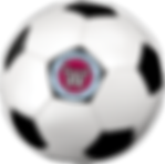 soccer-ball-with-logo-small.png