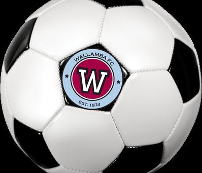 End of Year Soccer Arvos - W's of 2019 - u7's, u8's and u9's