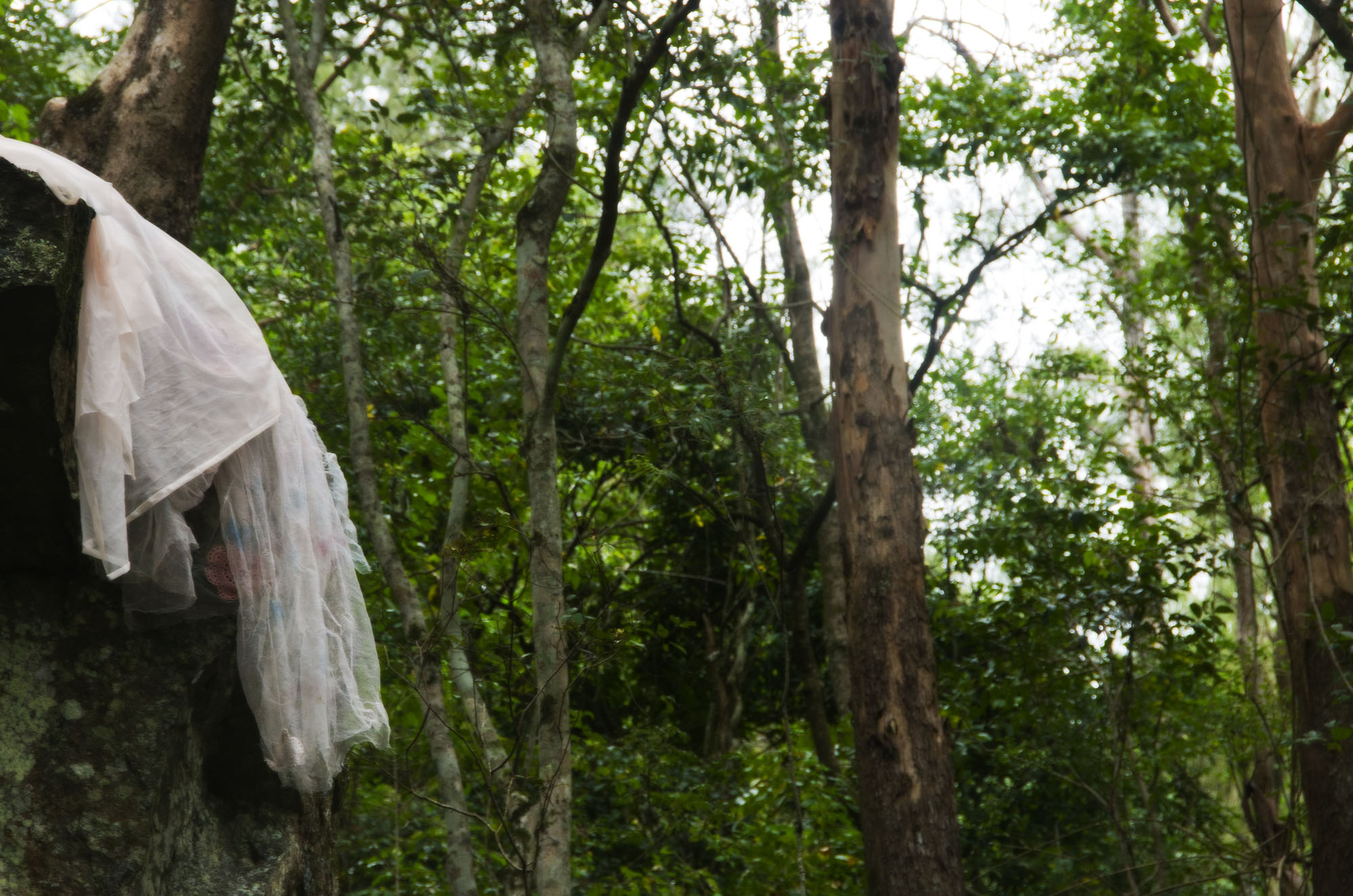 boho fashion in rainforest