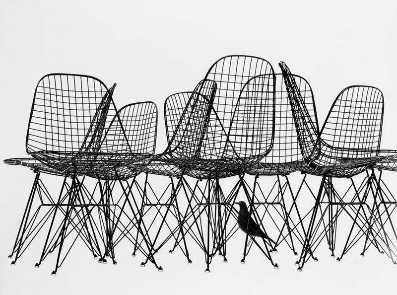 אדריכליסטית-הציפור של ויטרה