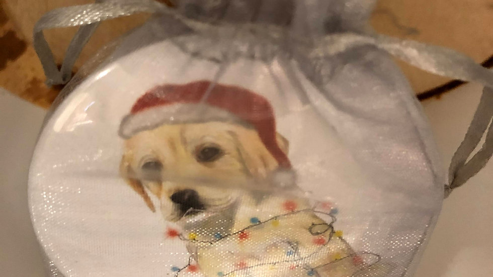 Santa Dog Mirror