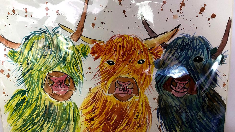 3 Highland Cows Watercolour