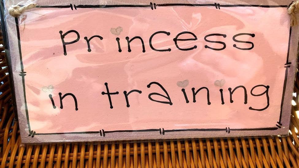 B002-204 Princess Training Wooden Plaque