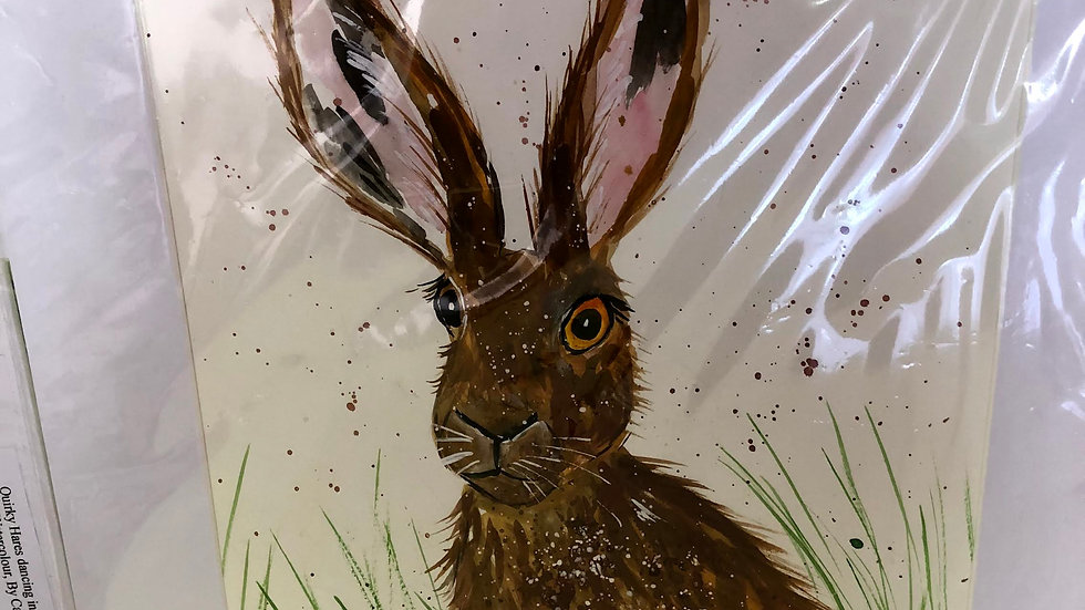 Handsome Hare Painted and Mounted
